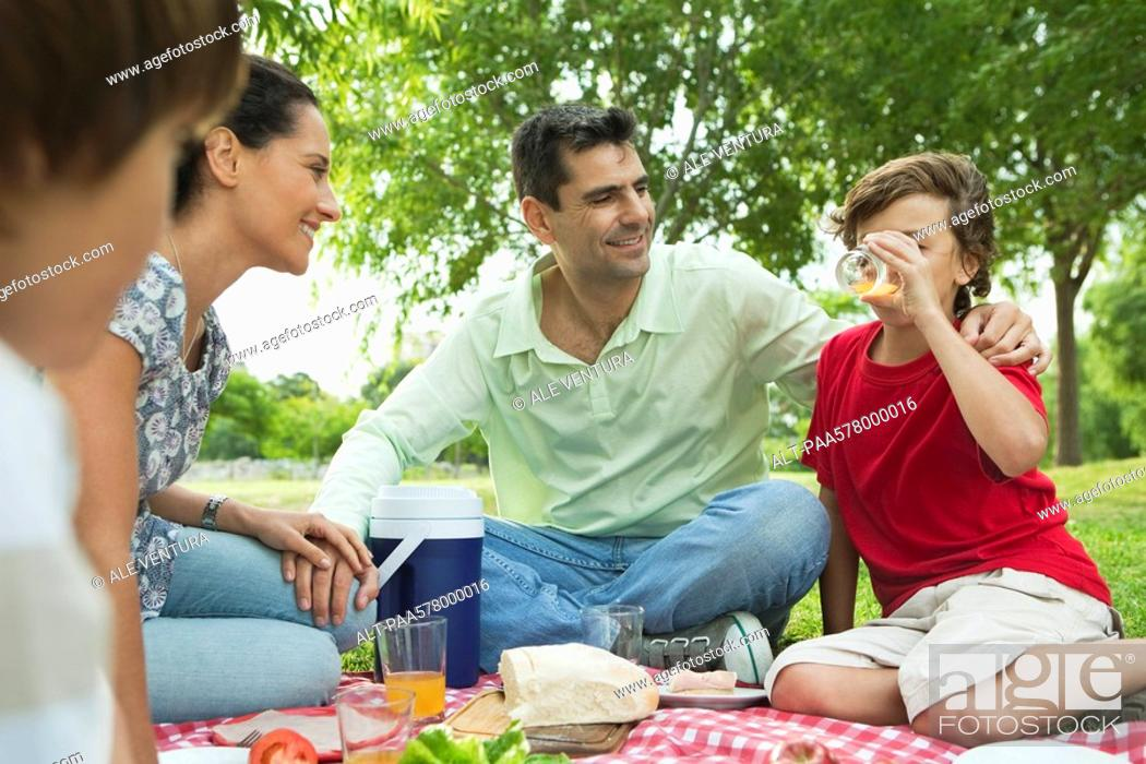 Imagen: Family enjoying picnic outdoors.