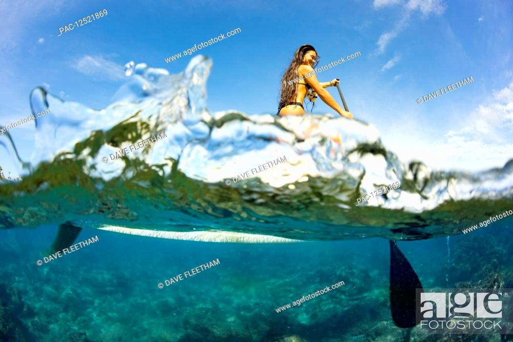 Stock Photo: Split image of above and below water and a woman on a stand up paddle board; Hawaii, United States of America.