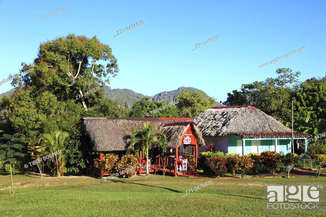 Stock Photo: Cuba, Vinales Valley, Valle de Vinales, tobacco farm, .