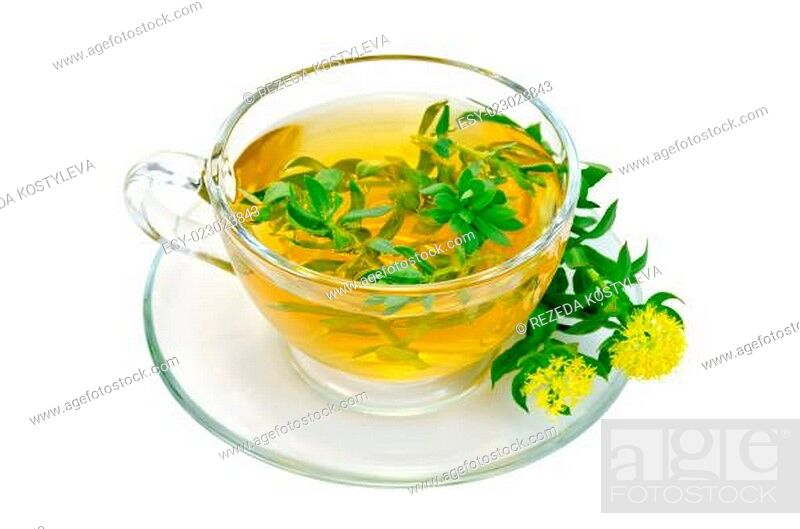 Stock Photo: Herbal tea with flowers Rhodiola rosea in a glass cup.