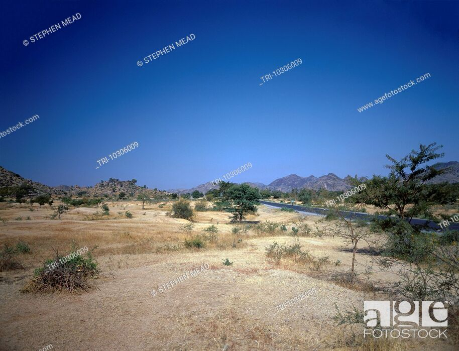 Stock Photo: North Cameroon Road From Maroua To Chad.