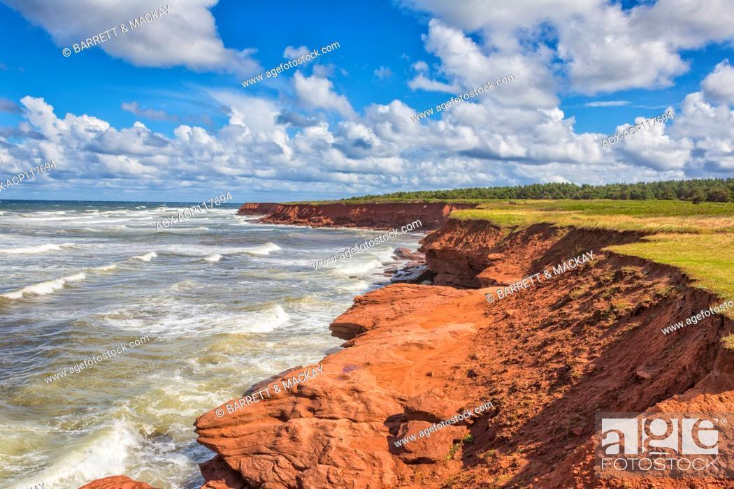 Stock Photo: Red sandstone cliffs, Cavendish, Prince Edward Island National Park, Prince Edward Island, Canada.