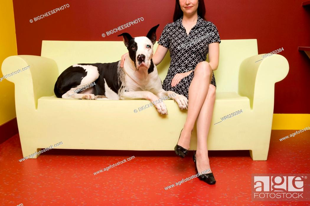 Stock Photo: Woman sitting on couch with Great Dane.