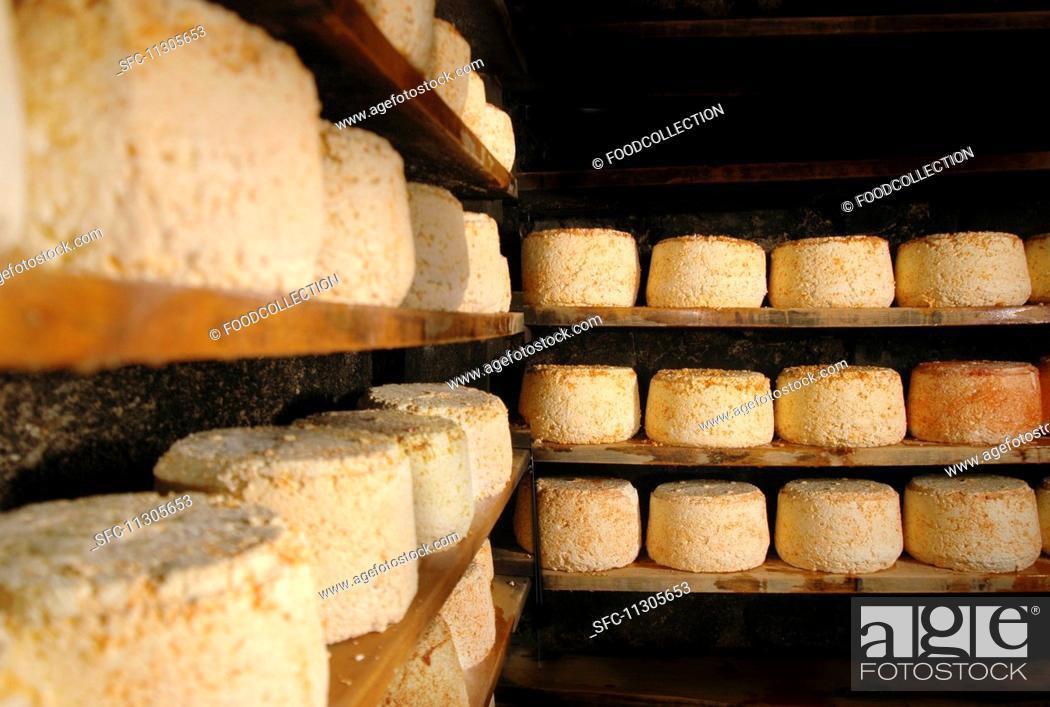 Stock Photo: Montafoner cheese in a cellar.
