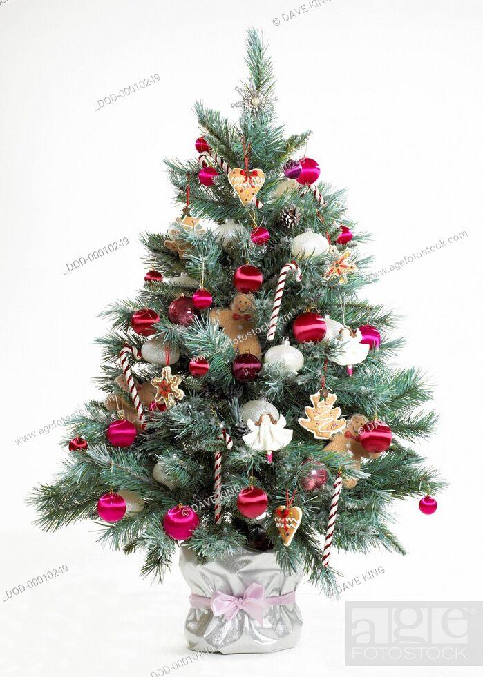 Imagen: Christmas tree.