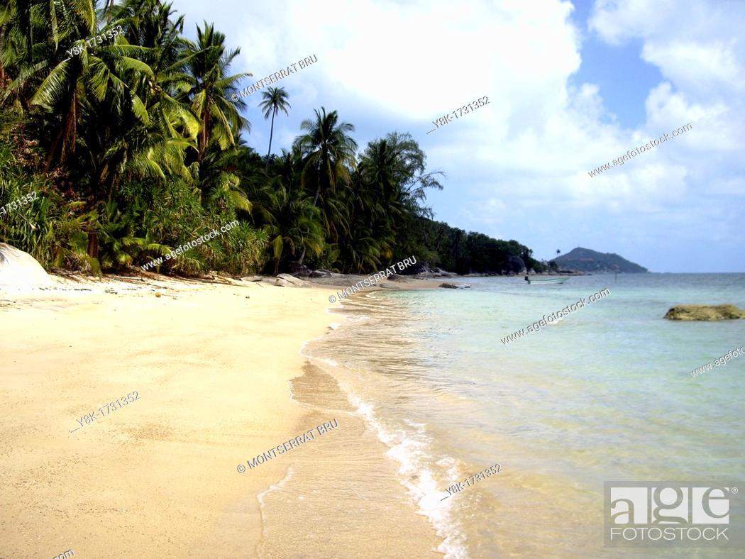 Stock Photo: Tropical white sand beach with palmtrees and white clouds near Ban Tai, Koh Phangan, Thailand.