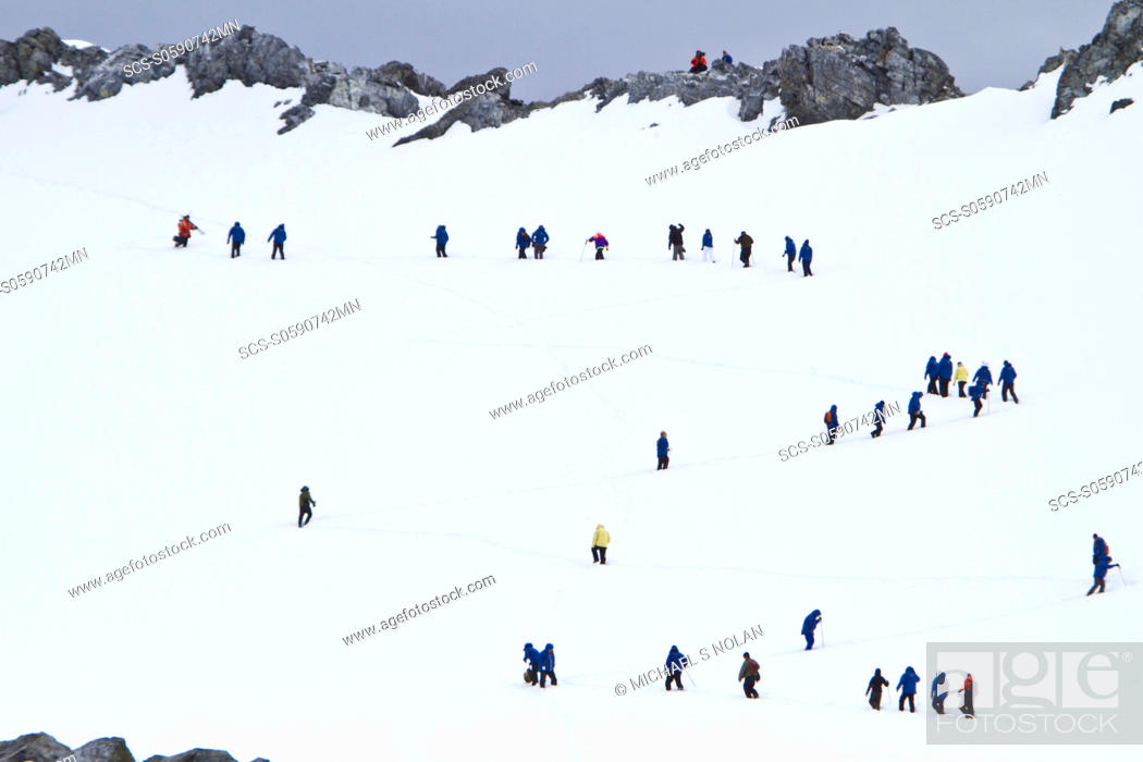 Stock Photo: Guests from the Lindblad Expedition ship National Geographic Explorer climb steep snow trail at Orne Harbor, Antarctica MORE INFO Lindblad Expeditions pioneered.