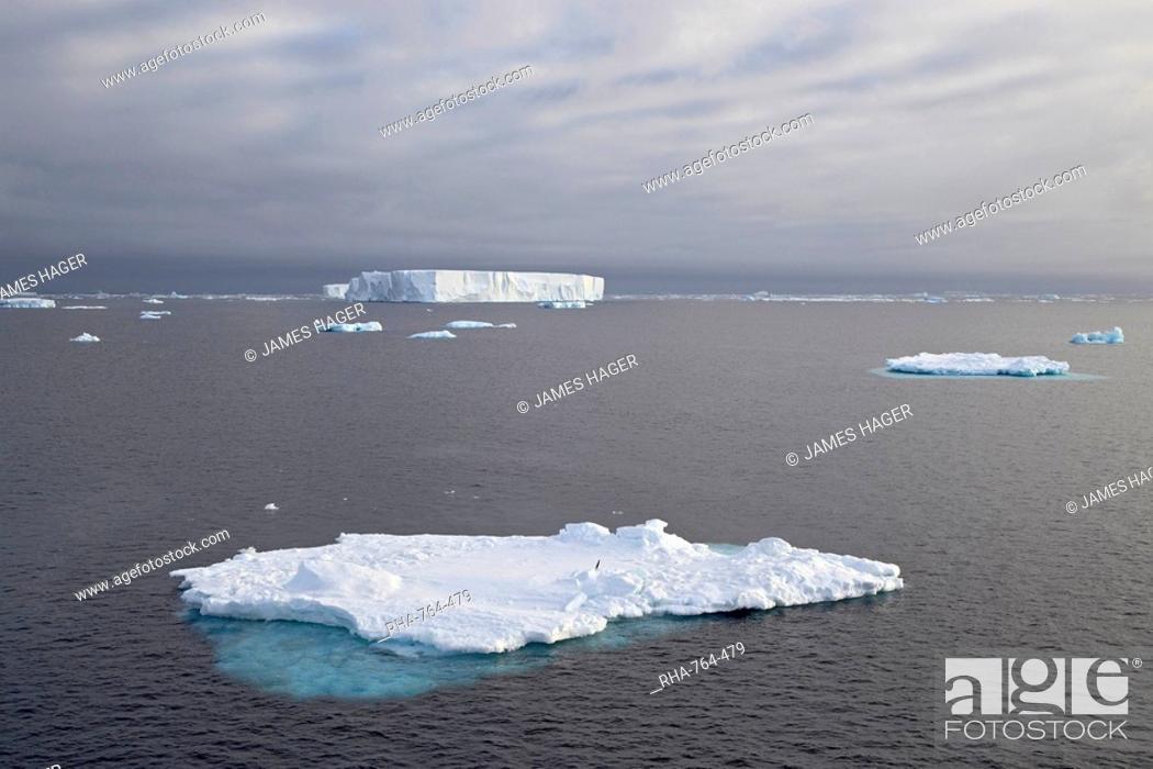 Stock Photo: Icebergs, Antarctic Peninsula, Antarctica, Polar Regions.