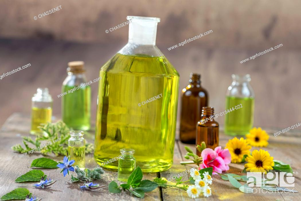 Imagen: Herbal therapy and aromathrapy concept: alternative treatment with fresh medicinal herbs and flowers on old cracked paint wooden background.