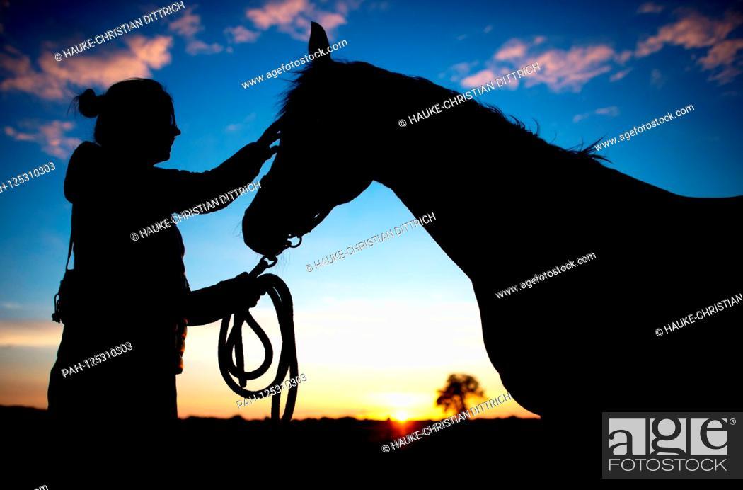 Stock Photo: The silhouette of a young woman and her horse in front of the evening sky in Wardenburg (Germany), 10 July 2018.   usage worldwide.