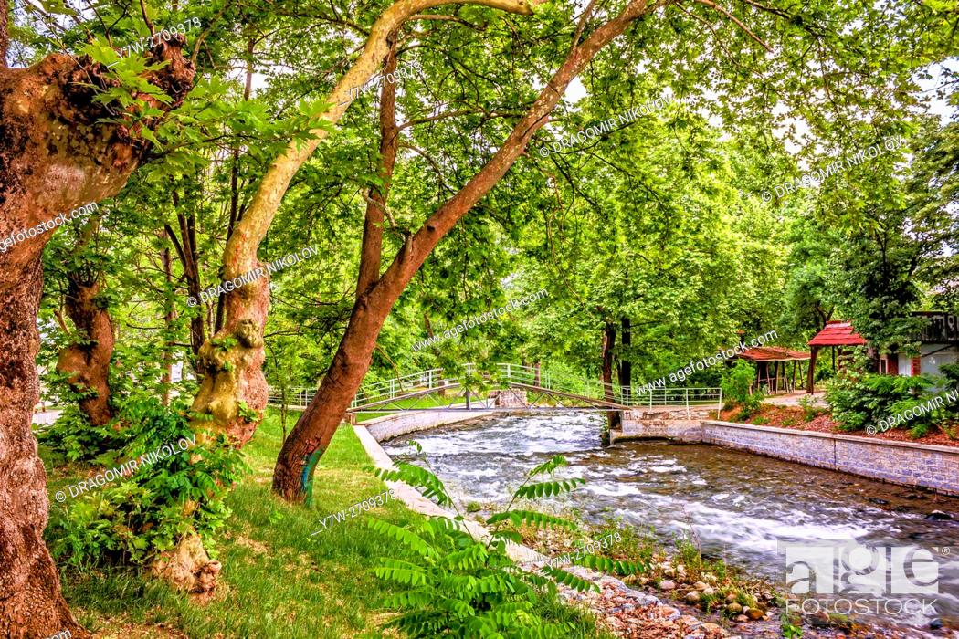 Stock Photo: Under the trees in park, close to river. The photo is taken in beautiful park in Sandanski town, situated in Bulgaria, Europe.