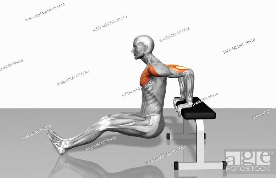 Stock Photo: Bench dips Part 1 of 2.