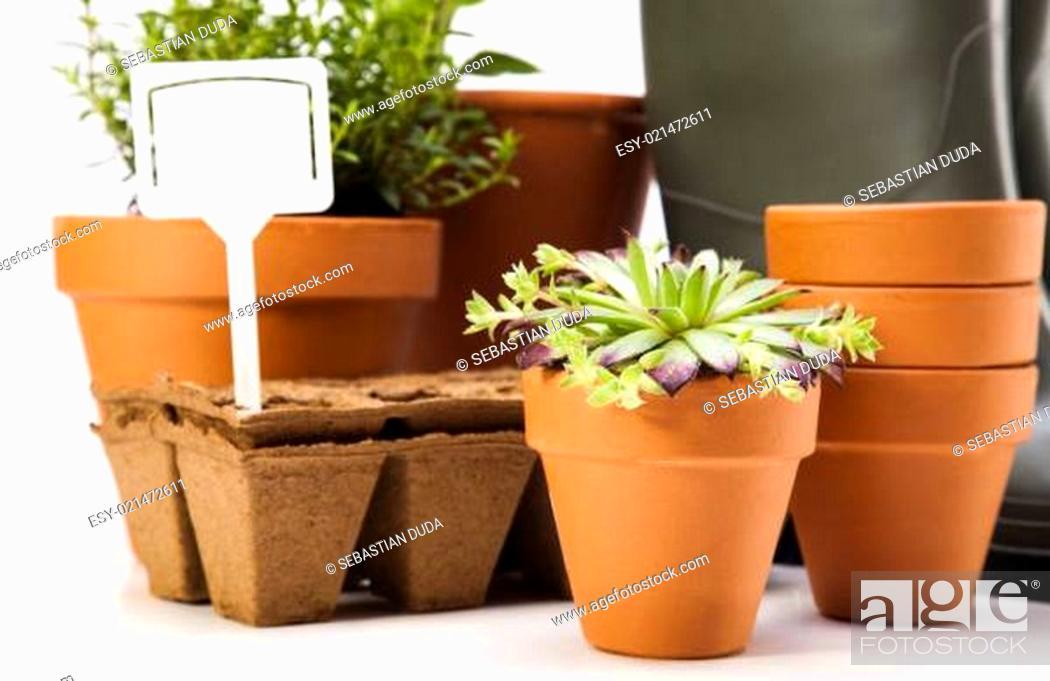 Stock Photo: Gardening time, garden.