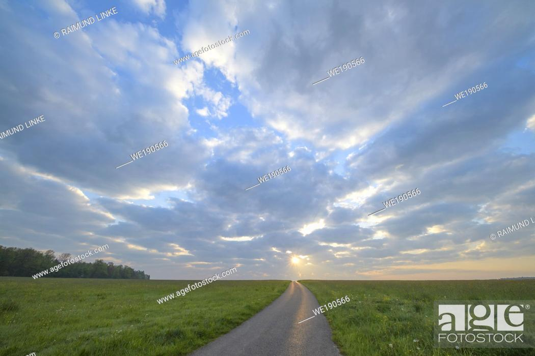 Photo de stock: Meadow with road at sunrise.