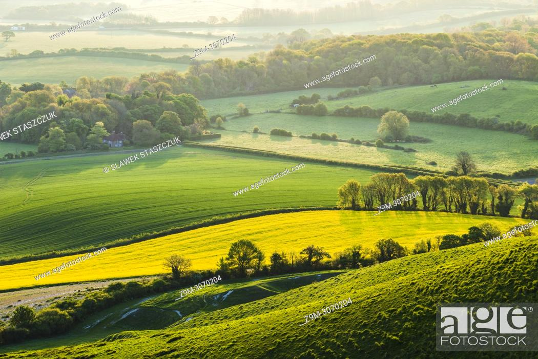 Stock Photo: Spring morning in South Downs National Park, East Sussex, England.