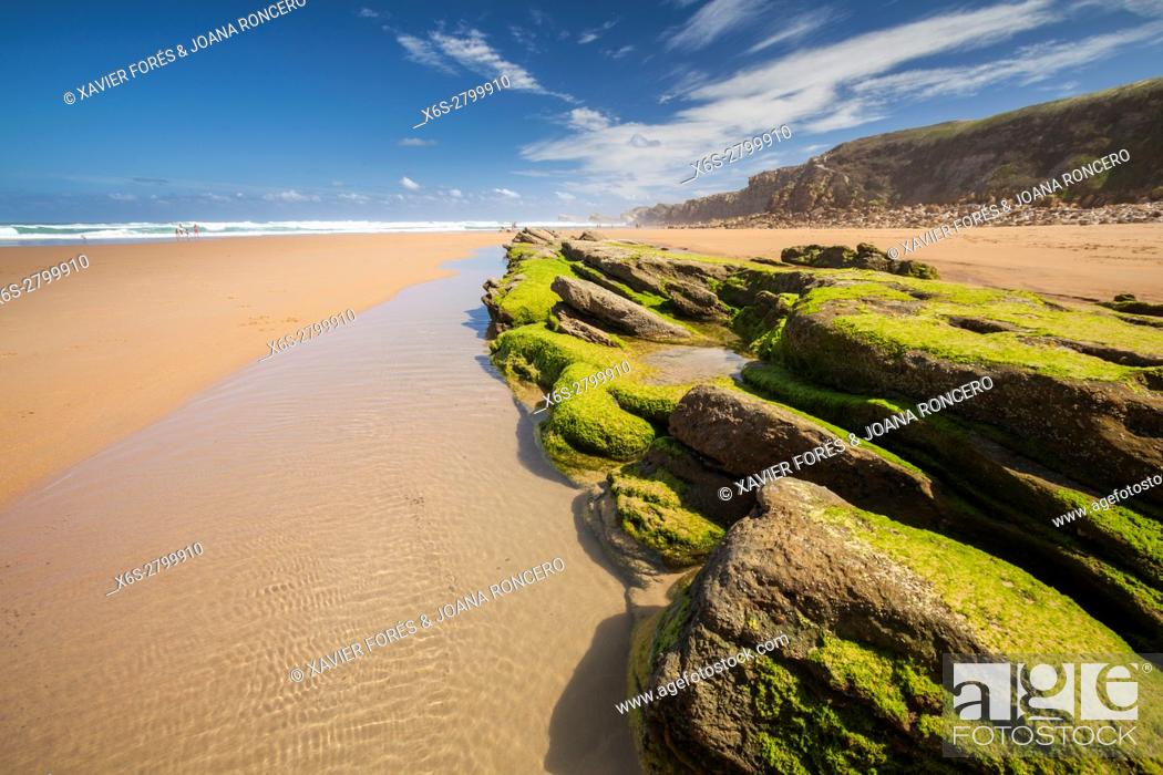 Stock Photo: Natural Park of the Dunes of Liencres, Liencres, Cantabria, Spain.