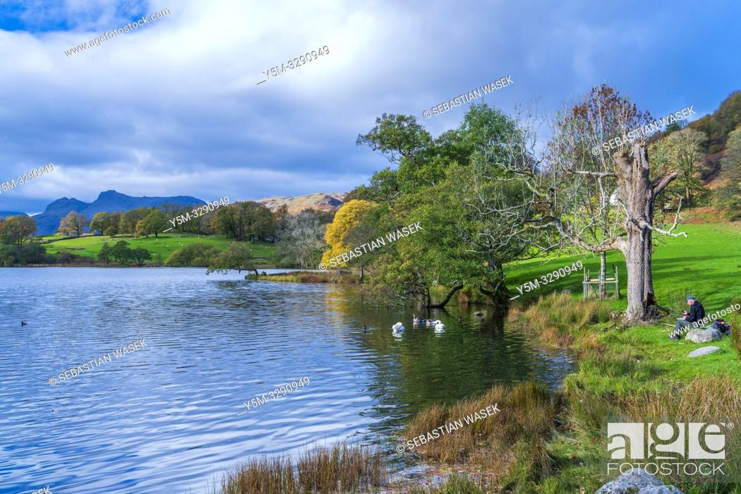 Stock Photo: Loughrigg Tarn Elterwater, Lake District National Park, Cumbria, England, UK, Europe.