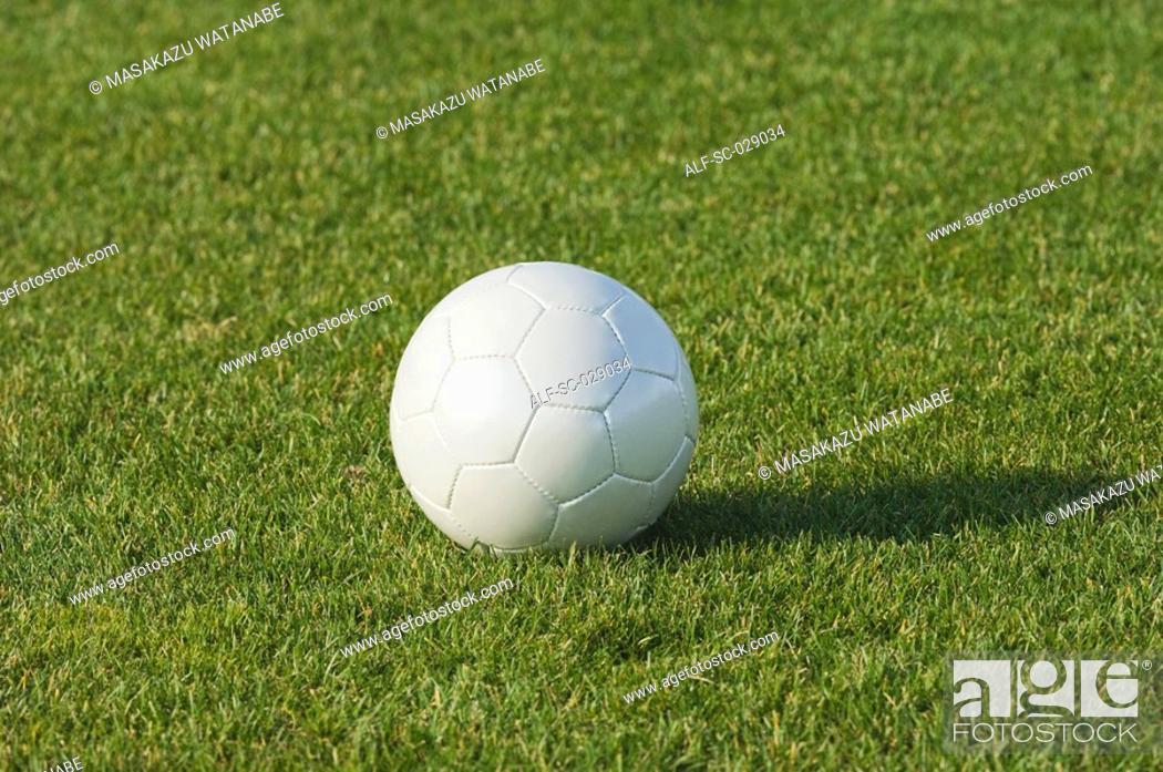 Stock Photo: White Ball.