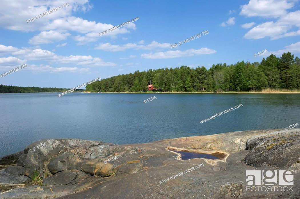 Stock Photo: View of cottage in coastal bay, Baltic Sea, Uppland, Sweden, may.
