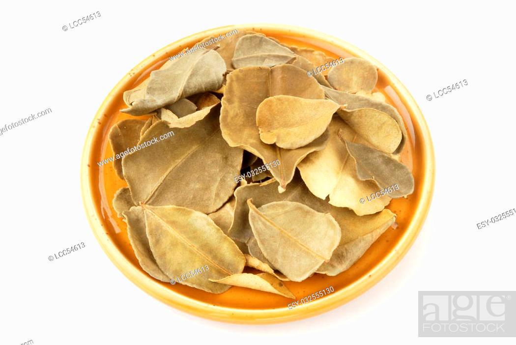 Stock Photo: Dried lemon leaves on white background.