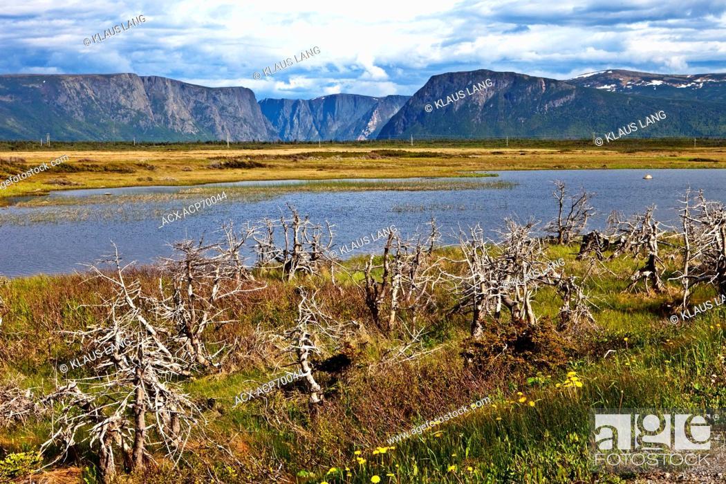 Stock Photo: Table Mountains, Gros Morne National Park, UNESCO World Heritage Site, Newfoundland.