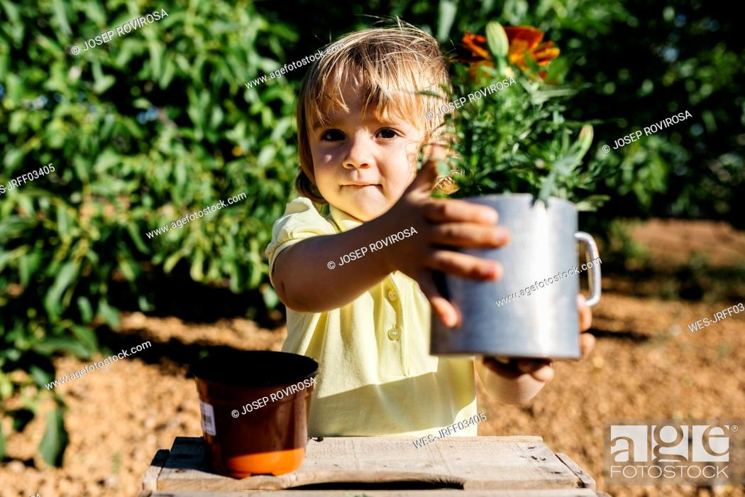 Stock Photo: Girl repotting a flower.