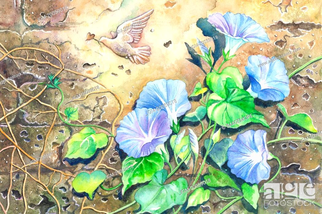 Stock Photo: Animal, Watercolor painting of petunia and a flying dove on the wall.