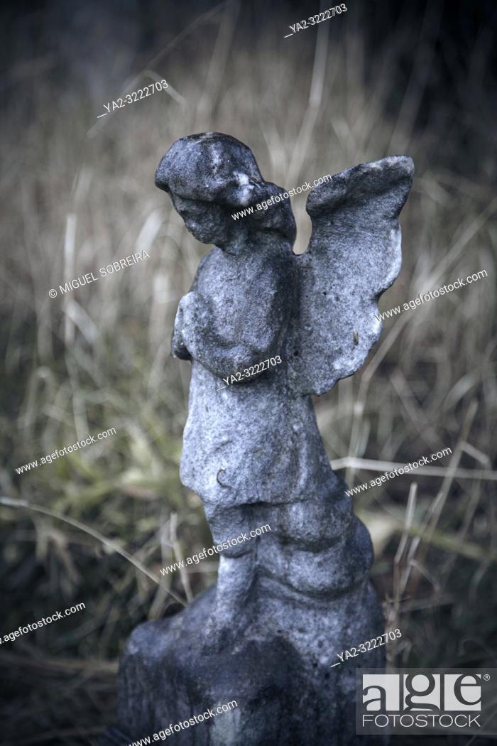 Imagen: Angel Statue Amongst Grass.