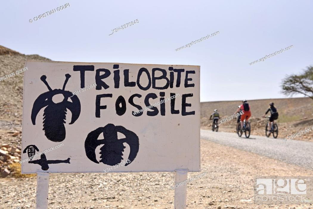 Stock Photo: sign indicating the sale of fossils and bike riders in a palm grove village near Agdz, Draa River valley, Province of Zagora, Region Draa-Tafilalet, Morocco.