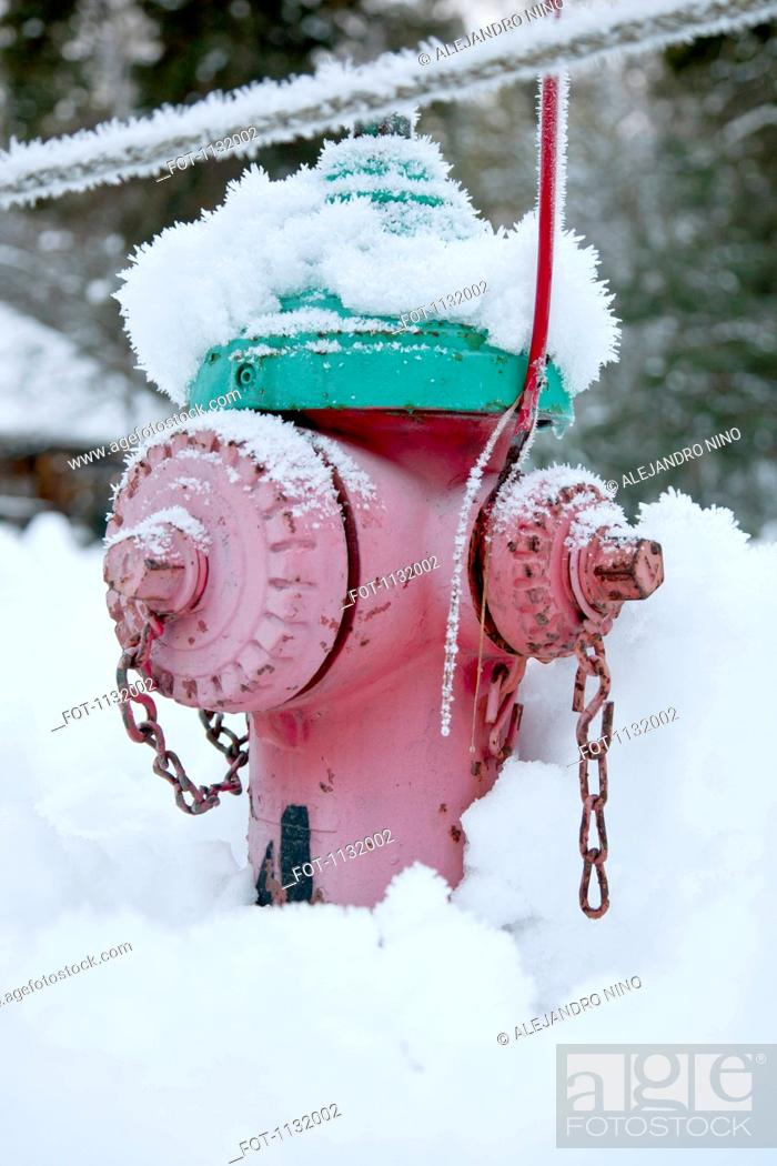Stock Photo: A fire hydrant in snow.