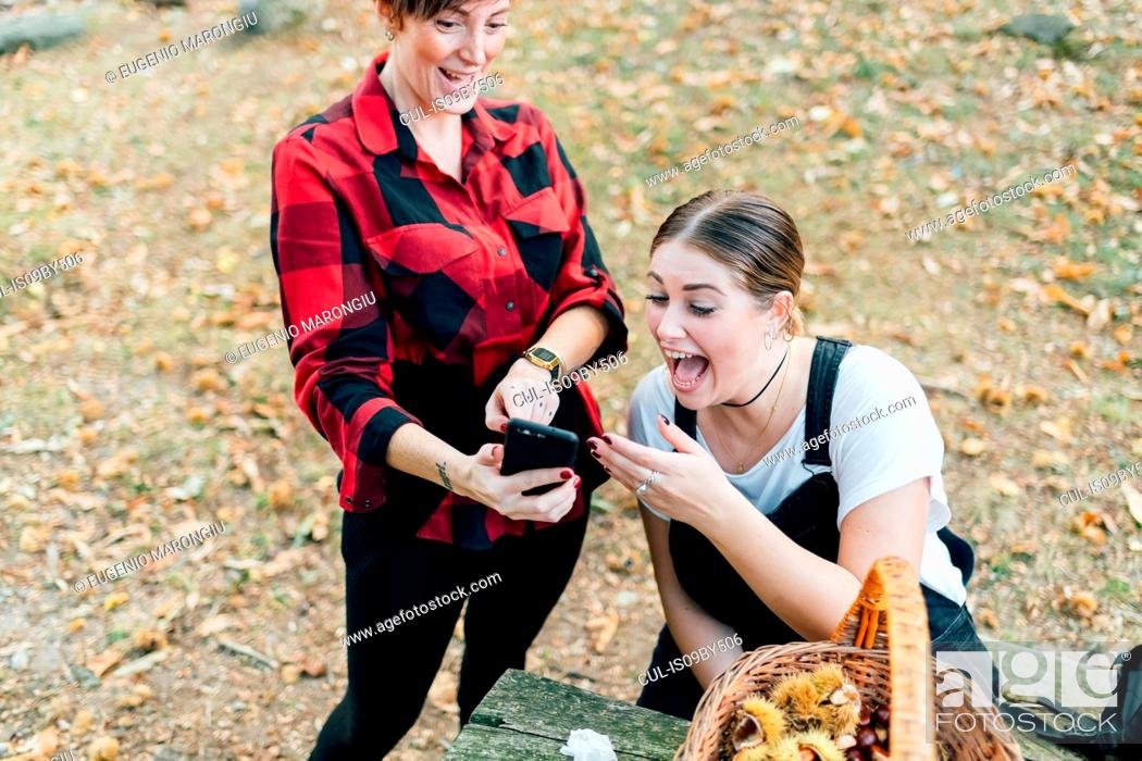 Stock Photo: Friends laughing at text message while chestnut collecting, Rezzago, Lombardy, Italy.