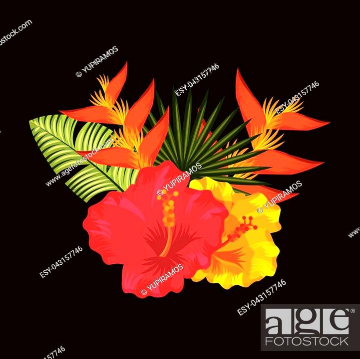 Tropical Hibiscus Bird Of Paradise Palm Leaves Black Background Vector Illustration Stock Vector Vector And Low Budget Royalty Free Image Pic Esy 043157746 Agefotostock Tropical jungle palm tree background in pink and purple colors. 2