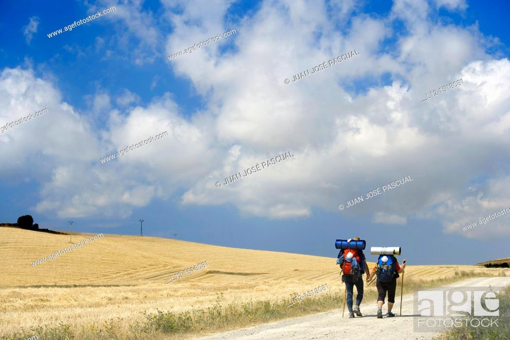 Stock Photo: Saint Jacques Way, Road to Santiago pilgrims near Belorado, Burgos province, Castille-Leon, Spain.