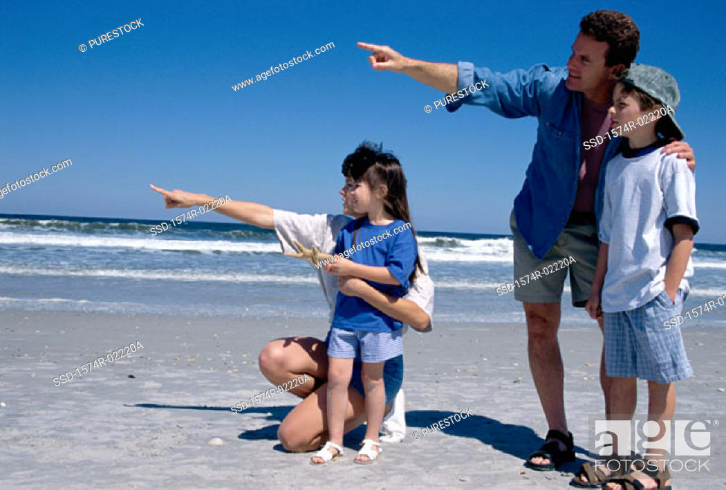 Stock Photo: Young couple pointing on the beach with their son and daughter.