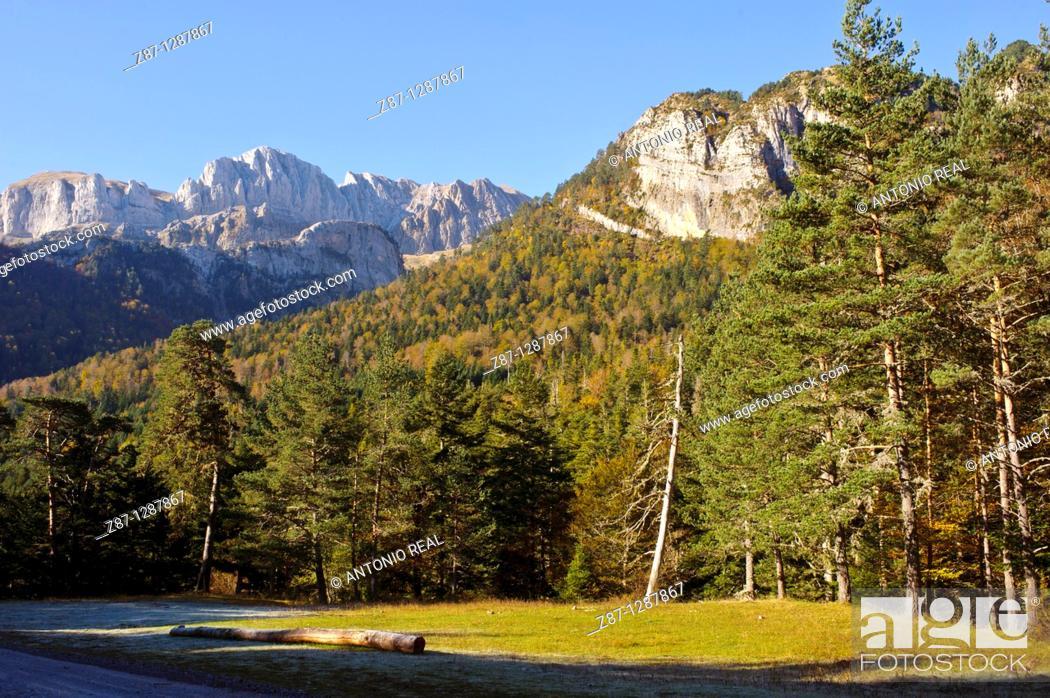 Stock Photo: Peña Forca  Valle de Hecho  Parque Natural Valles Occidentales  Pirineos  Huesca.
