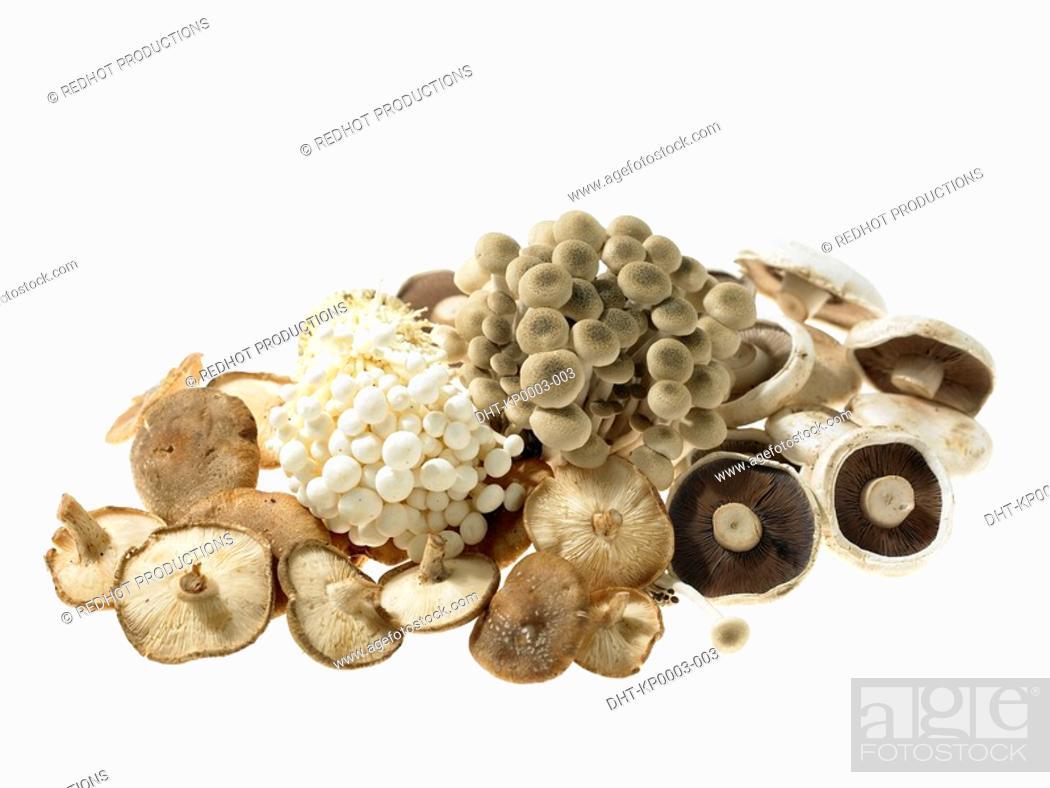 Stock Photo: Pile of various Mushrooms.