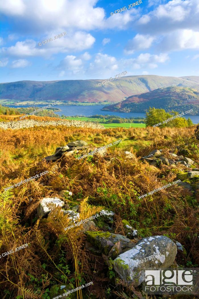 Stock Photo: Ullswater, Barton Fell and Hallin Fell from Gowbarrow Park in the Lake District Park, Cumbria, England.