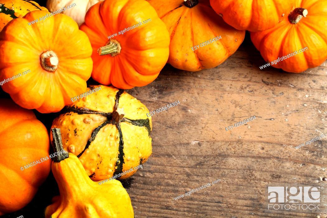 Photo de stock: Pumpkins frame on wooden table.