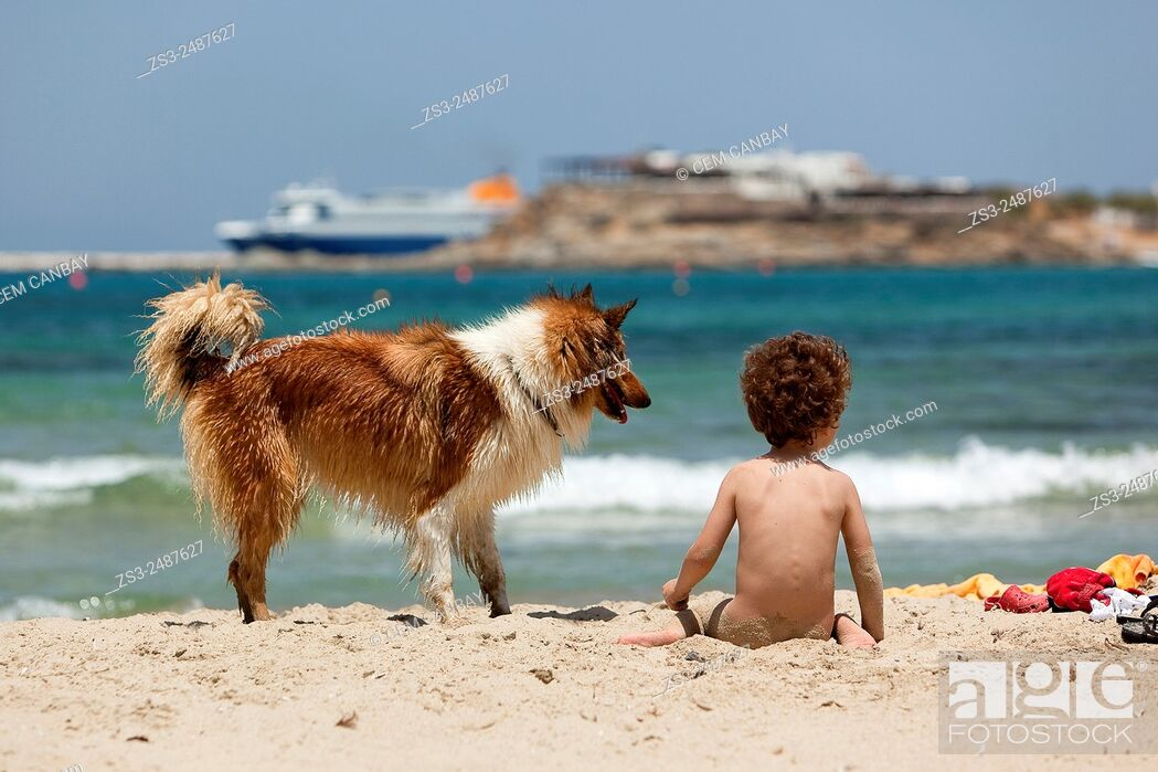 Stock Photo: Child with a dog at the beach, Naxos, Cyclades Islands, Greek Islands, Greece, Europe.