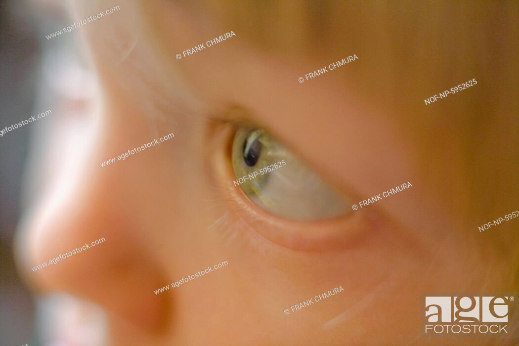 Stock Photo: Close-up of a childs green eye.