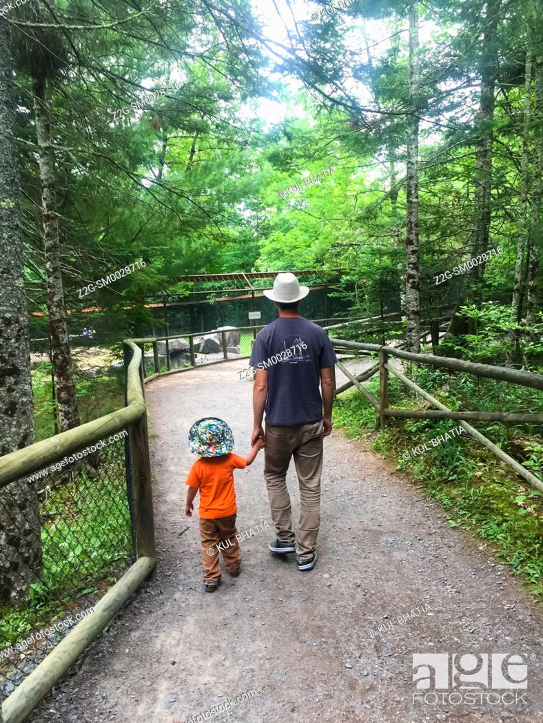 Stock Photo: A father and son strolling on a path in a wildlife park, Nova Scotia, Canada.