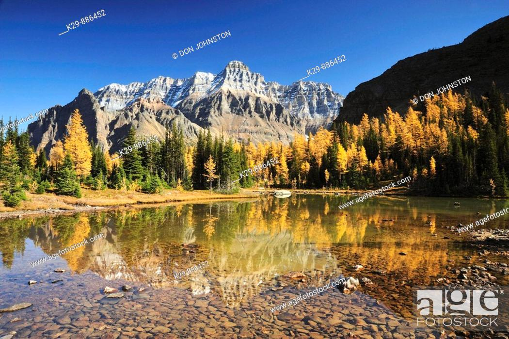 Stock Photo: Wixwaxy peaks and Mt Huber reflected in Schäffer Lake.