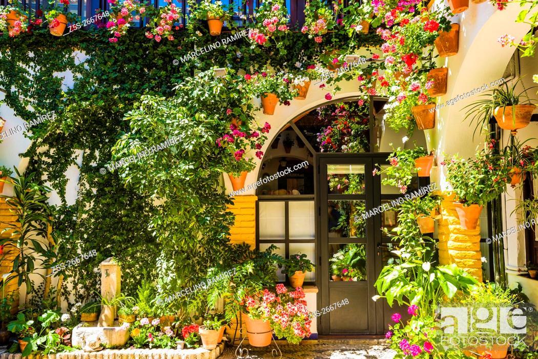 Courtyards Festival Of Cordoba 2016 La Fiesta De Los Patios De