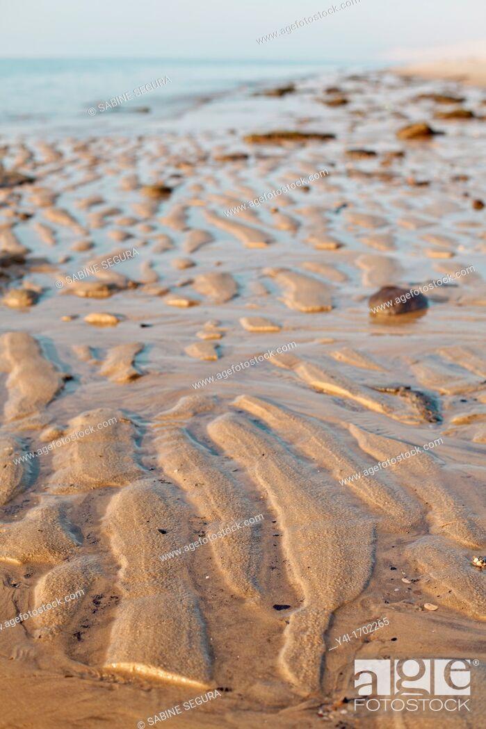 Stock Photo: Beach  La Teste de Buch  Gironde  Aquitaine  France.