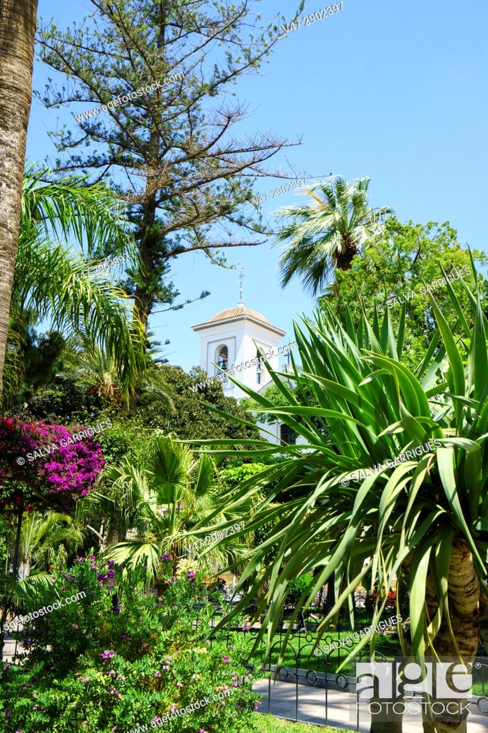 Imagen: Garden of the plaza of Spain and in the background tower of the church of San Jose, Aguilas, Murcia, Spain.