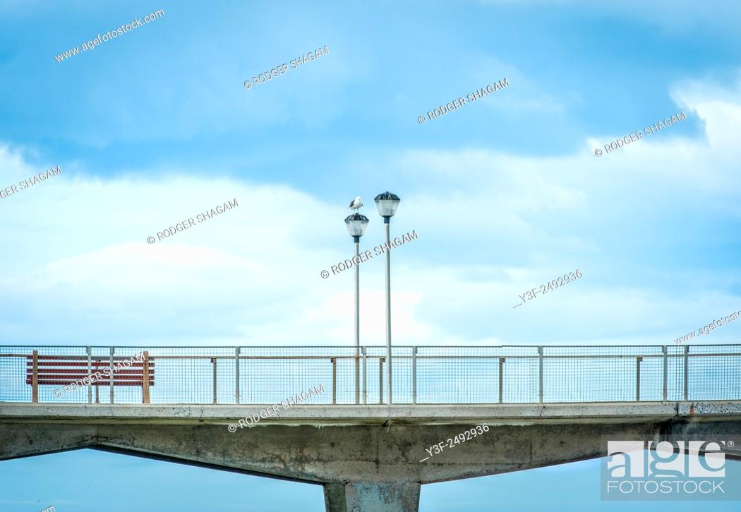 Stock Photo: Deserted seaside promenade boardwalk . Only visitor is a lone seagull ... Cape Town, South Africa.