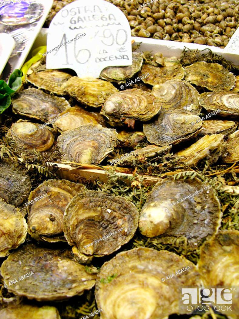 Stock Photo: Oysters. La Boquería market. Barcelona. Spain.