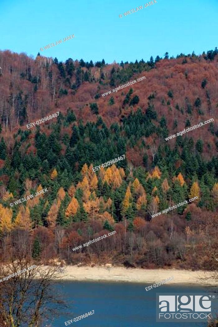 Stock Photo: Autumn colors in the mountains.