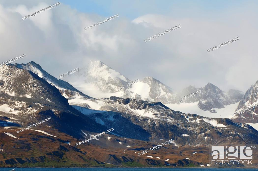 Imagen: Saint Andrews Bay, Snow covered mountains, South Georgia Island.