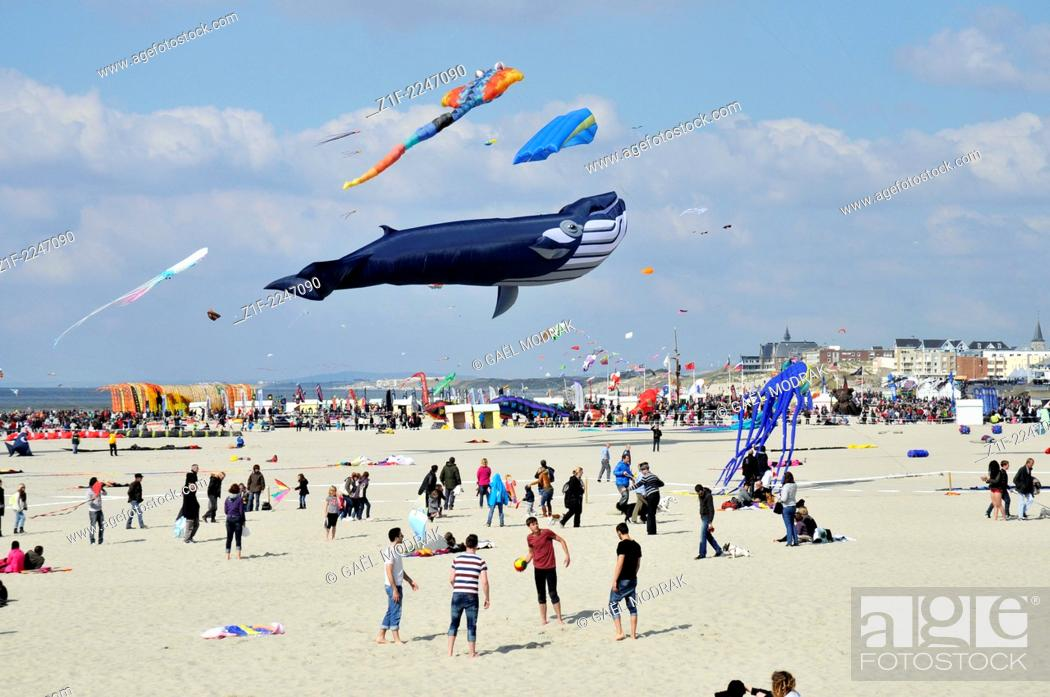 Stock Photo: Wind festival of Berck-sur-Mer in the north of France.